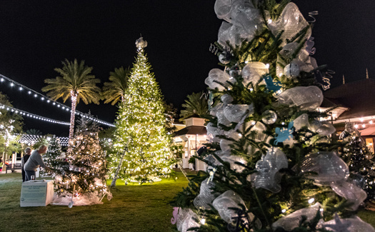 Christmas At Grand Boulevard San Destin
